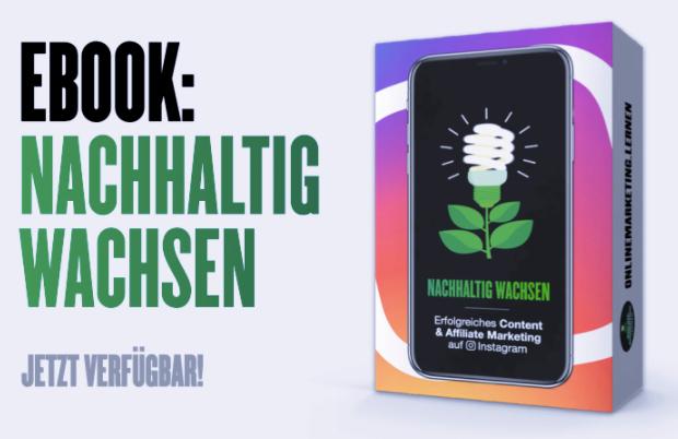 Buchcover Nachhaltig Wachsen mit Instagram