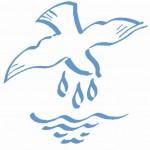 Taube mit Wasser Bild zur Taufe